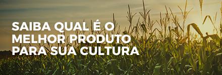 Saiba qual é o melhor produto para sua cultura