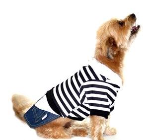 Camiseta para Cachorro Enzo - Mascote ec82a59fe2f